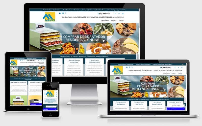 Site Institucional e Loja Virtual - MELONI